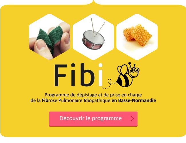 urml actu article fibi visuel - Lancement du Programme Fibi en Basse-Normandie